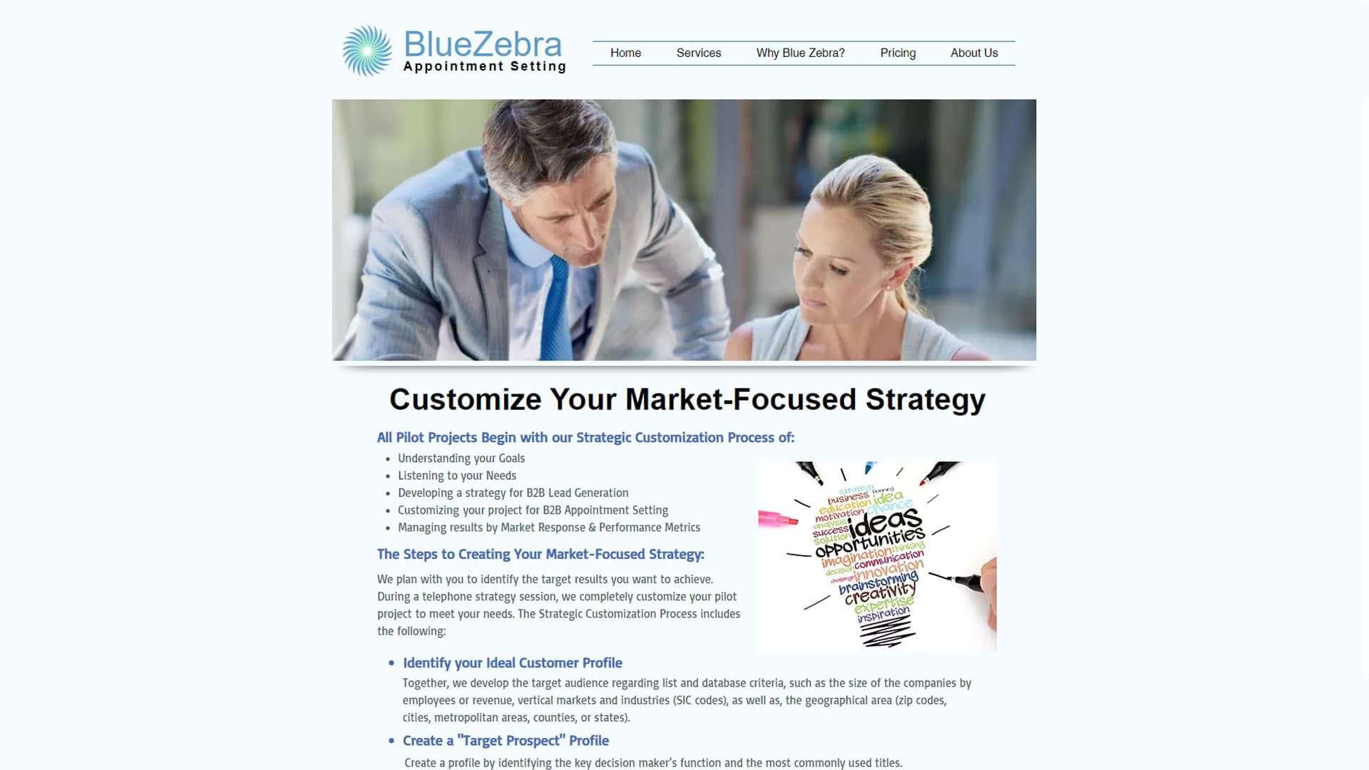 blue-zebra-appointment-setting-customization