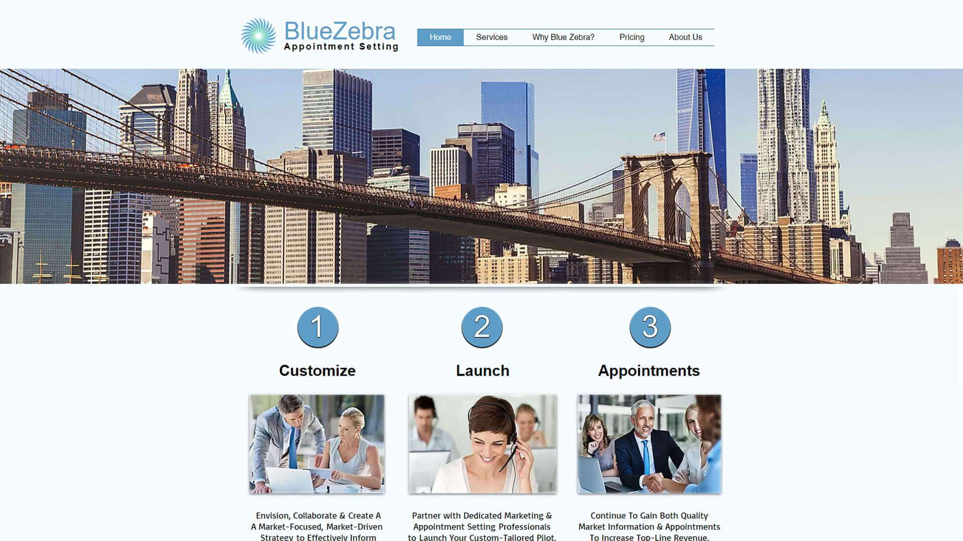 blue-zebra-appointment-setting-home-page