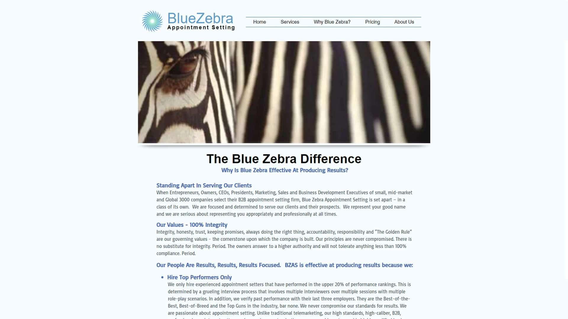 blue-zebra-appointment-setting-why-blue-zebra